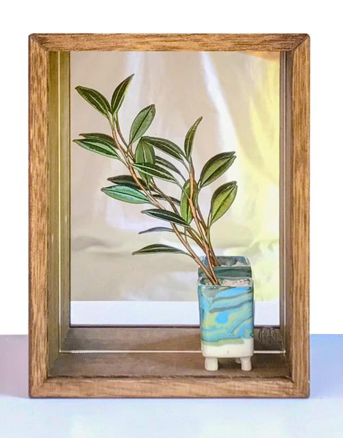 , 'Pure Enjoyment in a Planter – 6,' 2018, Yiri Arts