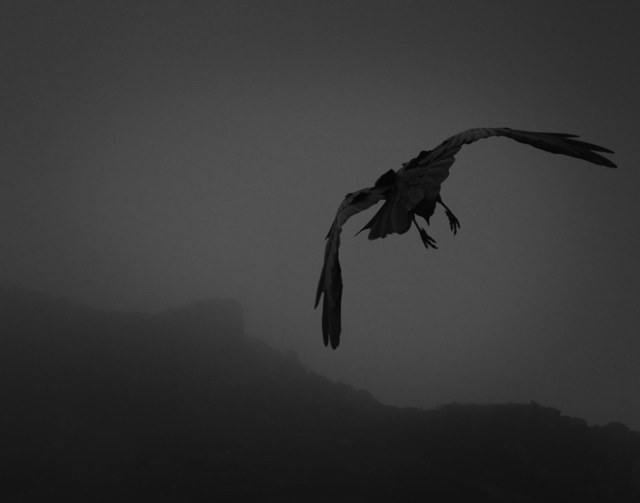 Beth Moon, 'Odin's Cove #6', 2012, Vision Neil Folberg Gallery