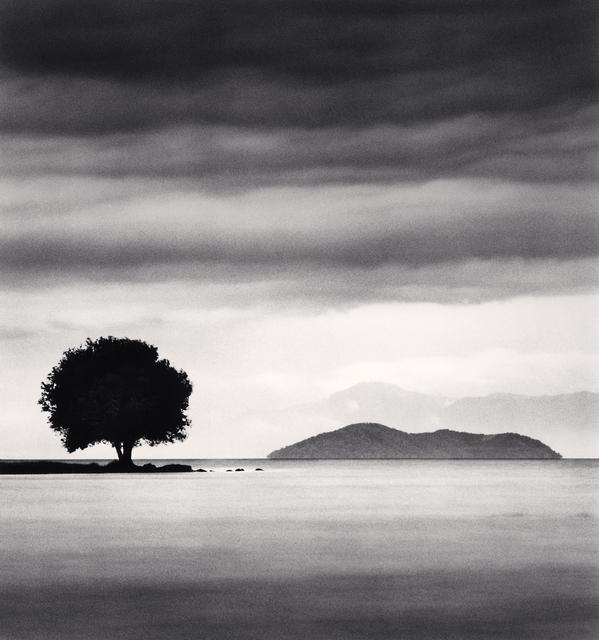, 'Biwa Lake Tree, Study 4, Omi, Honhsu, Japan.,' 2003, Blue Lotus Gallery
