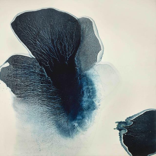 , 'Ambiguous Flower,' 2012, Galerie A&R Fleury