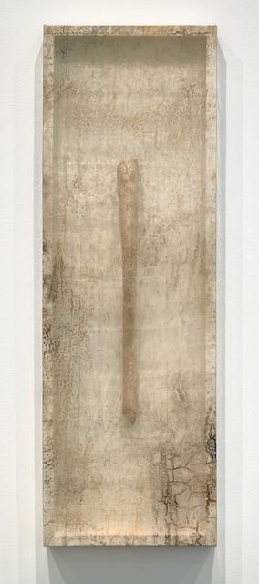 , 'Remnant (Walrus Bone III),' 2019, Minus Space