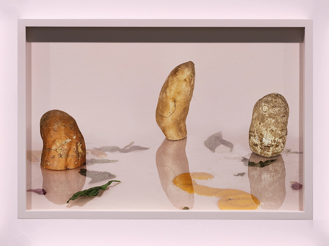 ", '""Root vegetables on pink with reflection"",' 2016, Temnikova & Kasela"