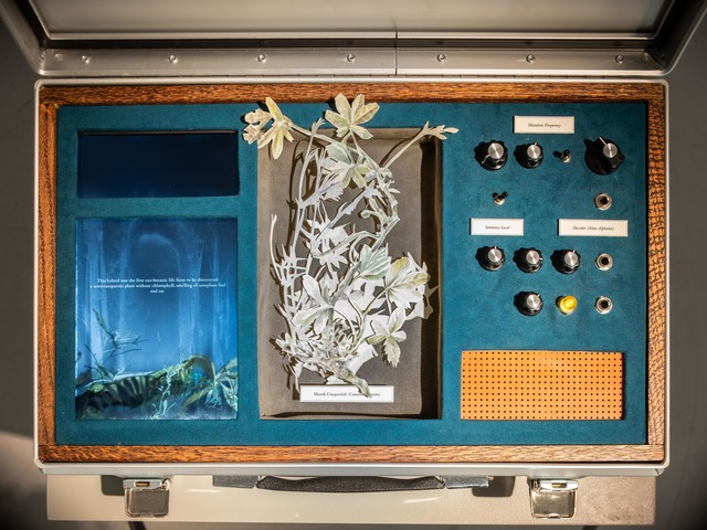 Johannes Heldén, 'Meditation (Marsh Cinquefoil)', 2019, Mixed Media, Suitcase in aluminium, future suede,  animation, analogue synthesizer, watercolour collage, Cecilia Hillström Gallery