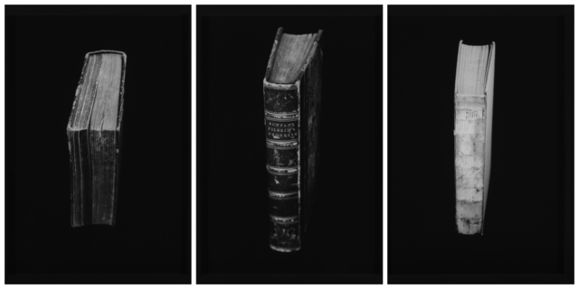 , 'Library series,' 2014, Barnard