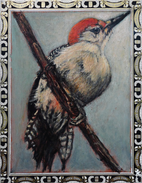 , 'Red Belly Woodpecker / A. Fuente,' , Gail Severn Gallery