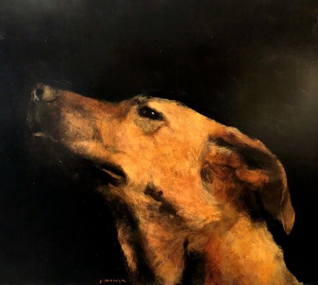 , 'Untitled (Perro),' 2017, Galerie Arcturus