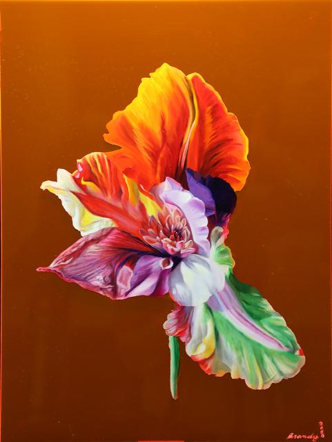 Brandy Kraft, 'Tulithyrus sanguineus, Hybrid No. 42', 2020, Painting, Oil on transparent plexiglass, Daniel Raphael
