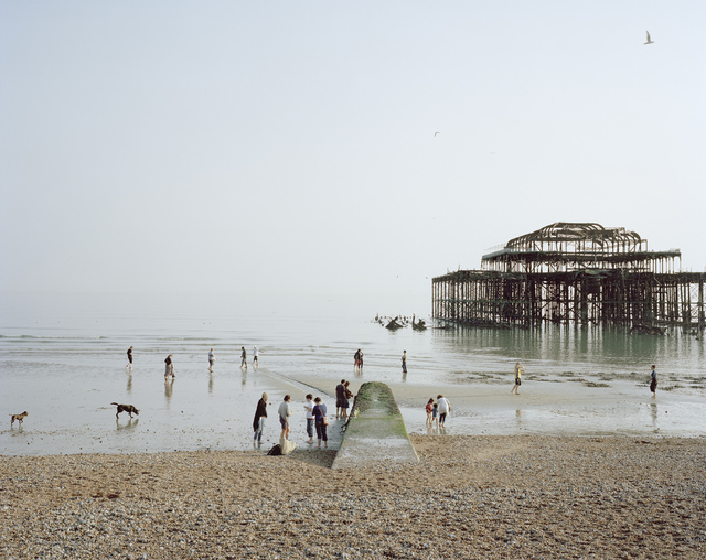 , 'Brighton West Pier,' 2011, Flowers