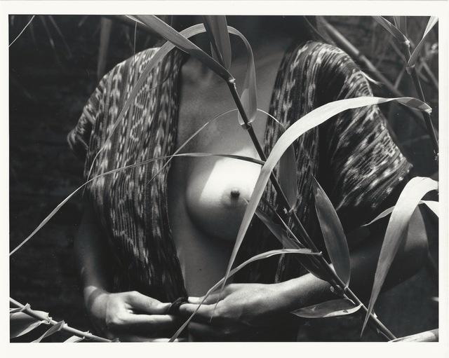 Manuel Álvarez Bravo, 'Fruto Prohibido', ca. 1977, Patricia Conde Galería
