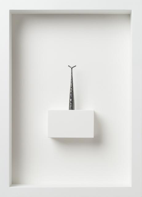 Paul Fry, 'I found myself in the woods | walking stick VII', 2019, bo.lee gallery