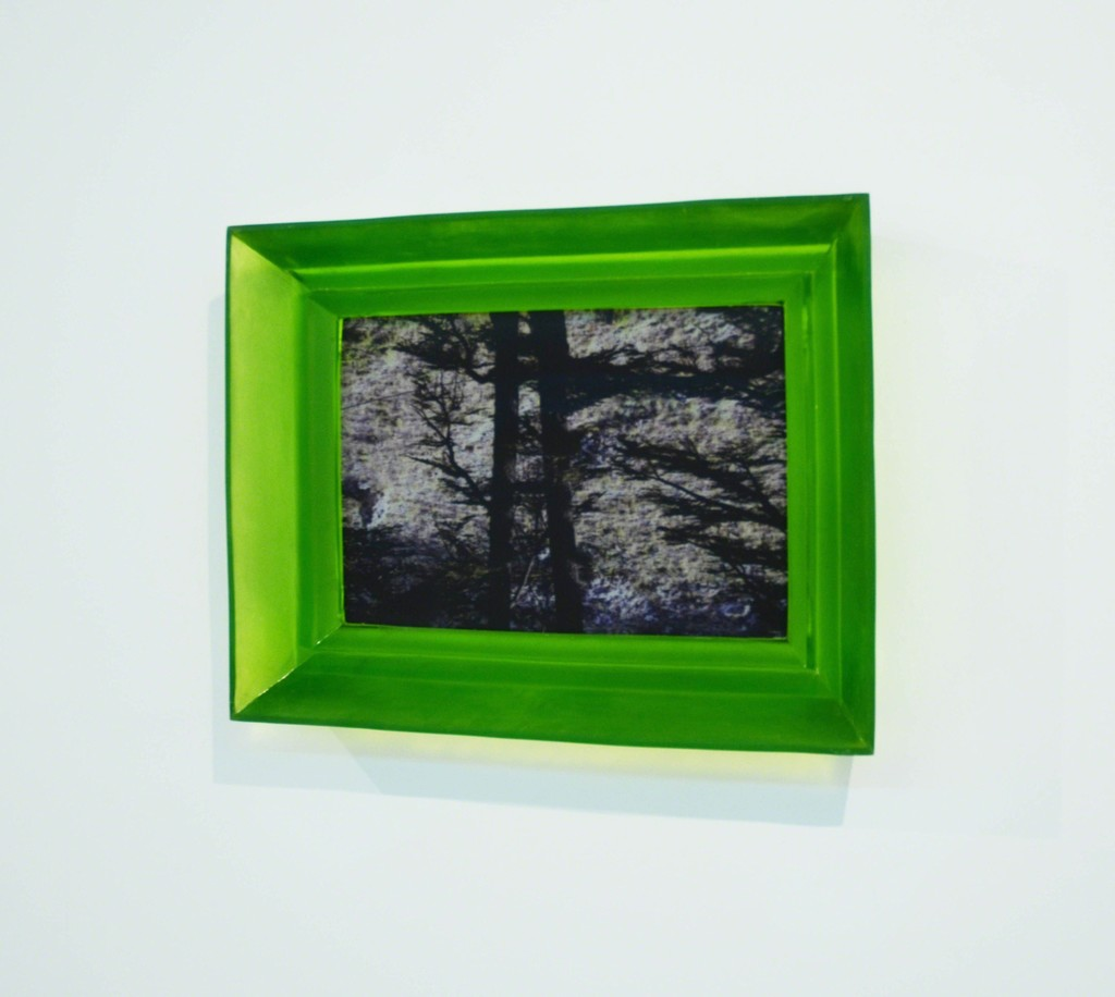Duale, 2012, methacrylate, printing on lenticular, 60x85x12 cm