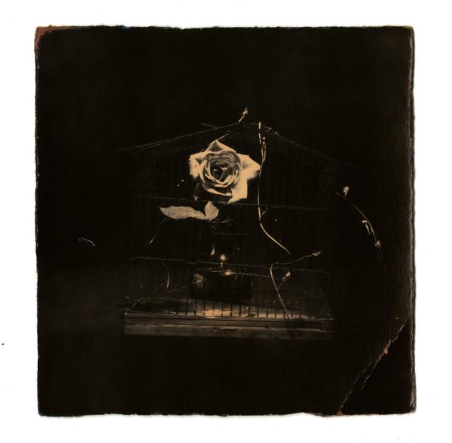 Yamamoto Masao, '0061, from Box of Ku', 1992, Etherton Gallery