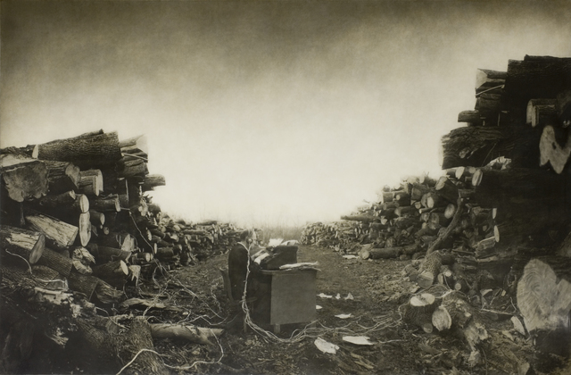 , 'Tree Stories,' 1998, Slete Gallery