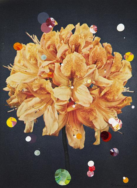 , 'Azalea Mollis X Sinensis Christoffel Wren,' 2015, Galerie Ron Mandos
