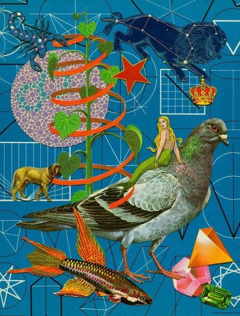 , 'Pigeon,' , Momentum Gallery