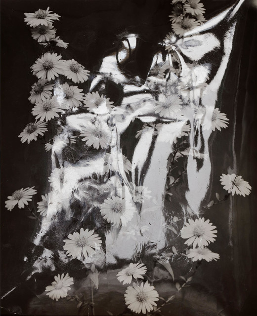 , 'Flash Flowers,' 2016, Setareh Gallery