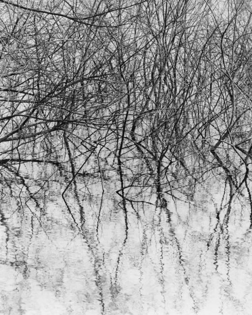 , 'LS 022,' 2015, Gaain Gallery