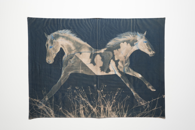 , 'Rocking Horse,' 2019, grayDUCK Gallery