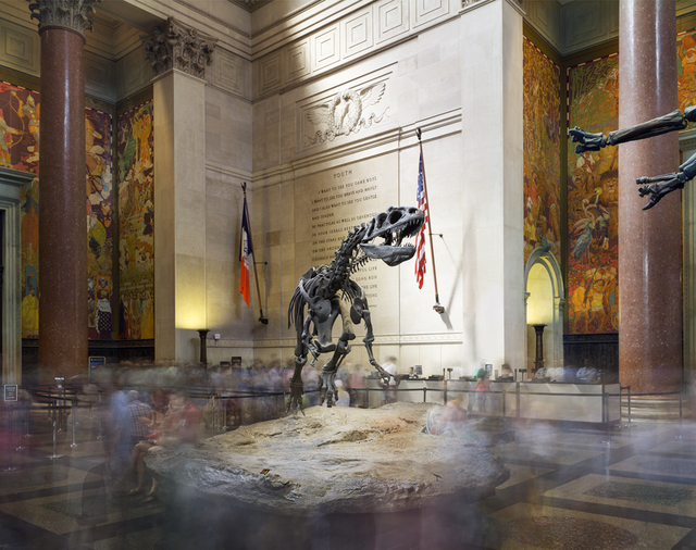 , 'Dinosaur, American Museum of Natural History,' 2015, Benrubi Gallery