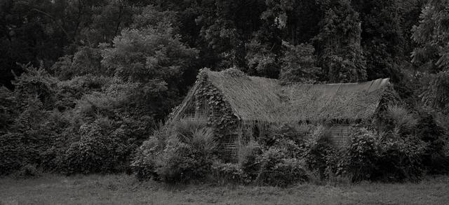 , 'The Garden,' 2012, Willas Contemporary