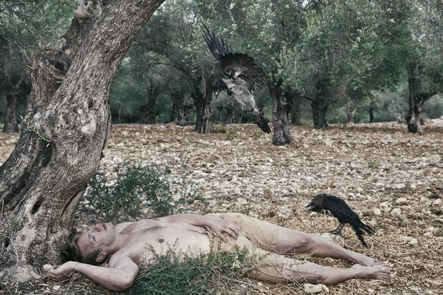 , 'Man & Crows in The Olive Grove,' 2013, Litvak Contemporary