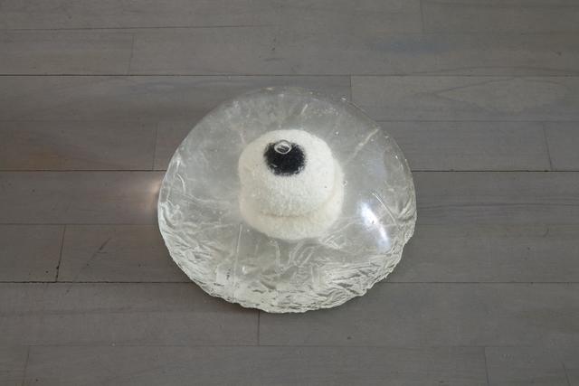 Eric Sidner, 'Eyeball #14', 2013, Johan Berggren Gallery