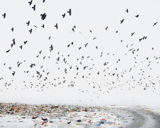 , 'Dump (Near Aiud, West Romania) ,' 2012, Robert Koch Gallery