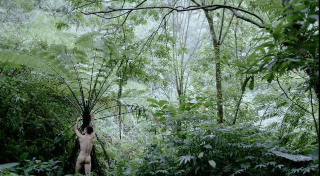 , 'Pteridophilia III 蕨戀 III,' 2018, Edouard Malingue Gallery