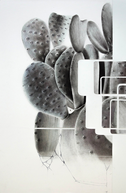 , 'g 19 62 d,' 2017, Massey Lyuben Gallery