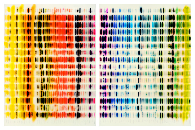 , 'Spectrum Chart - Warm Colors vs. Cool Colors (Diptych),' 2015, Dolby Chadwick Gallery