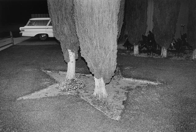 , 'DSCN0642,' 1972, Gallery Luisotti