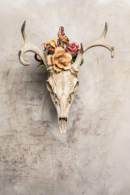 , 'Robin Rose,' 2018, LeMieux Galleries