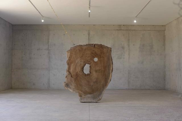 , 'Parota Tree,' 2016, Bortolami