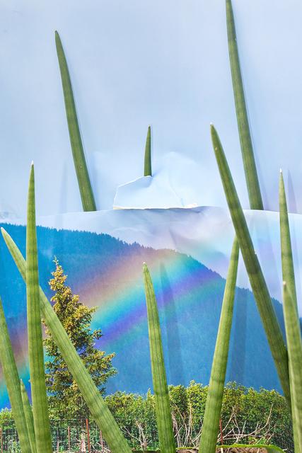 , 'Rainbow Ace Hardware,' 2016, Miranda Kuo Gallery