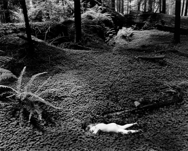 , 'Child in Forest, 1951,' 2012, Ryan Gallery