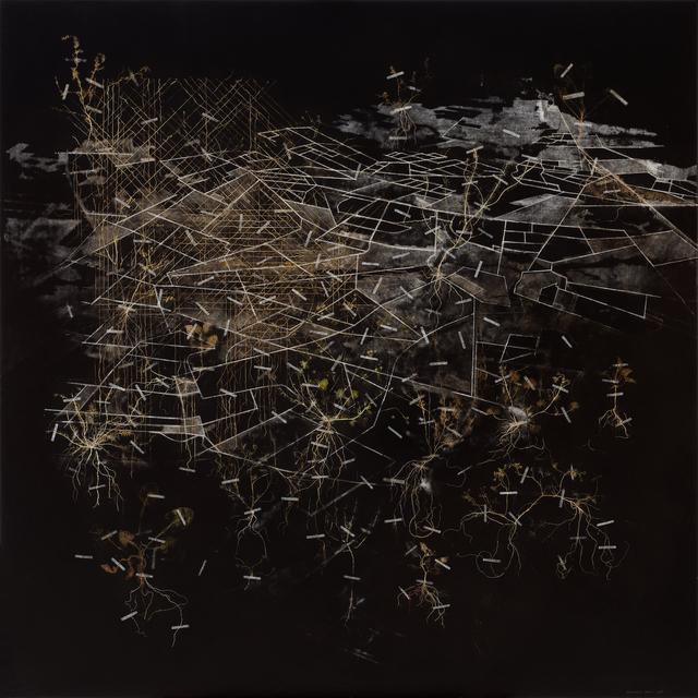 , 'Hybrid View,' 2015, Goodman Gallery