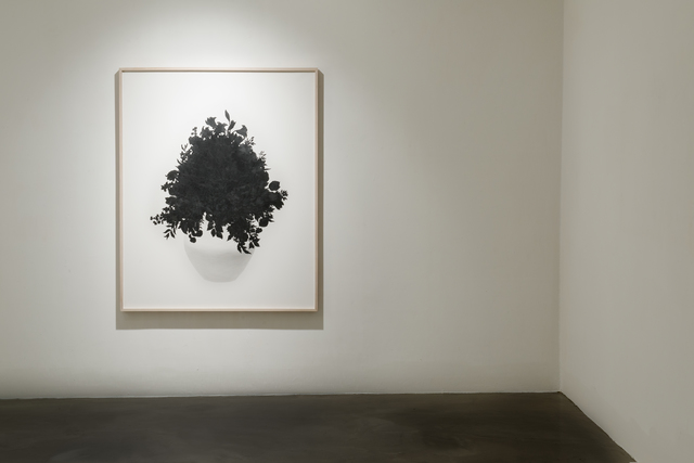 , 'Calmly Drawing a Flower,' 2014, Simyo Gallery
