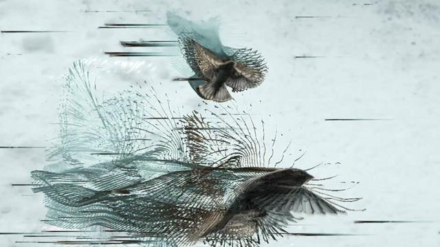 , 'Sparrows,' , Diehl Gallery