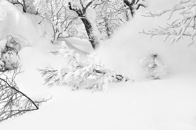 , 'Hokkaido White 06,' 2013, Artig Gallery
