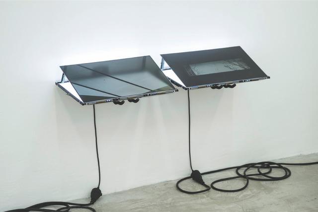 , 'White whale,' 2015, Cavalo