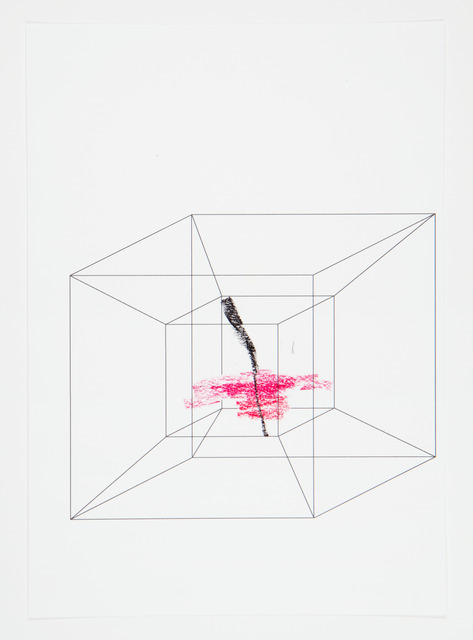 , 'Impossible Pictures (Brain image in hypercube II),' 2013, OSL Contemporary