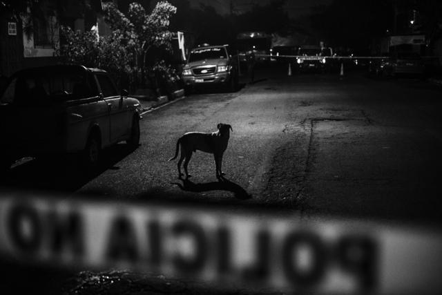 , 'Untitled,' 2015, Raffaella De Chirico