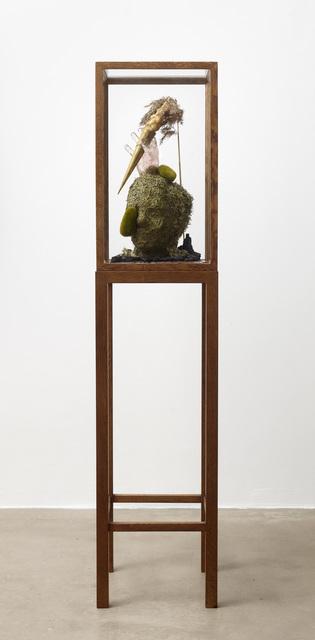 , 'Dark Safari Evidence,' 2015, Galleri Bo Bjerggaard