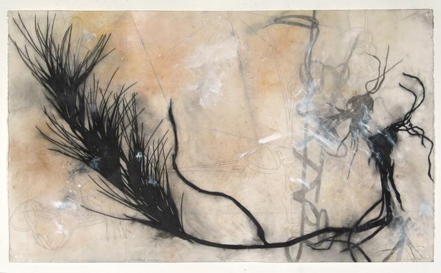 Suzi Davidoff | Cat Grass, Blue Grid | Available for Sale | Artsy