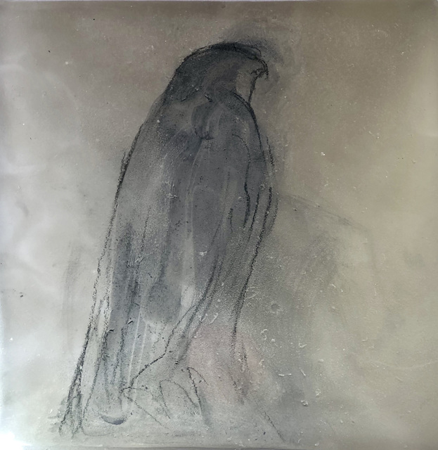 , 'Hawk on Glass,' 2019, Seager Gray Gallery