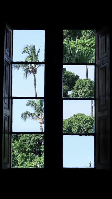 , 'Desarvorando [Unfolding Trees],' 2006/2015, Zipper Galeria