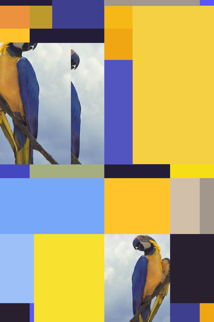 , 'Parrot Color Chart 4,' 2009, KaBe Contemporary