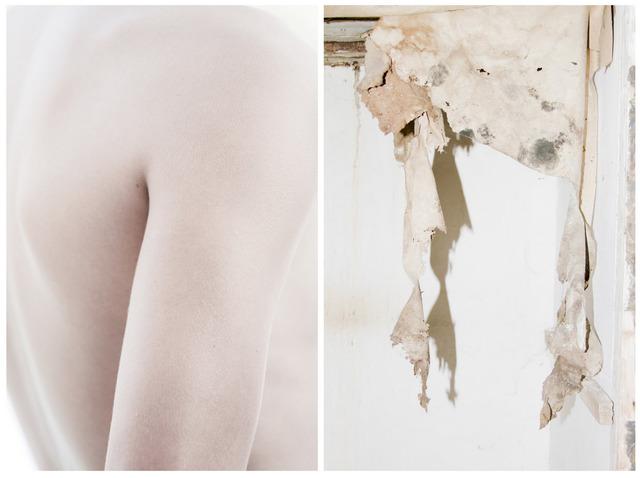 , 'Skin I & II,' 2016, Robert Fontaine Gallery