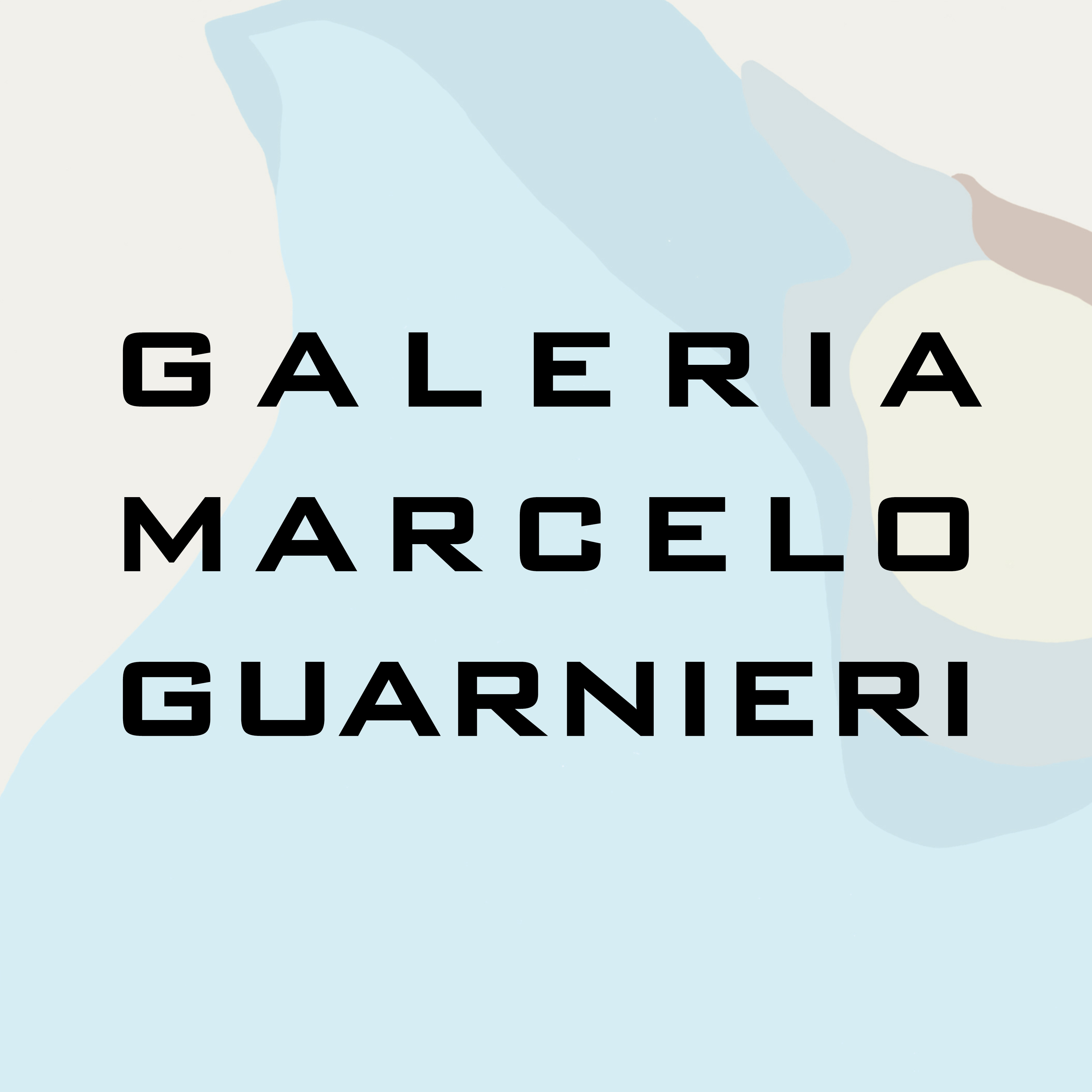 Marcelo Guarnieri