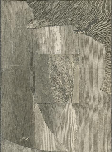 , 'environment #7,' 2015, Anglim Gilbert Gallery